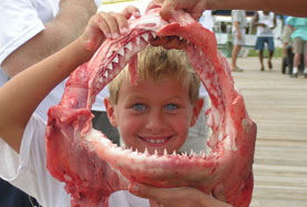 Young Anglers' Fishing Tournament this weekend on Dauphin Island!