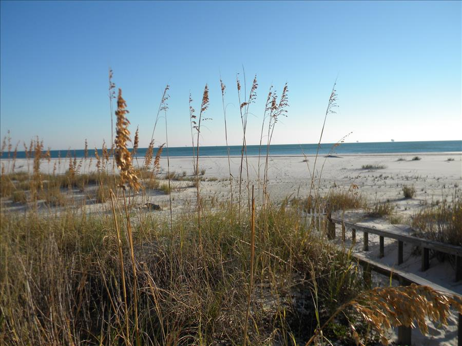 The Inn at Dauphin Island Condo Rentals