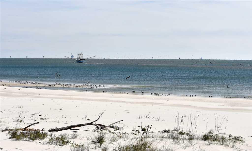 Quiet Gulf of Mexico Beach