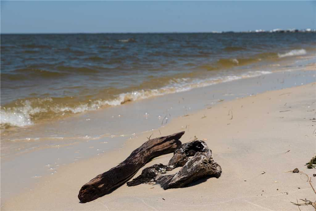 Dauphin Island a place for boating